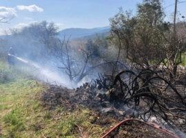 Αγρίνιο: Υπό έλεγχο η πυρκαγιά στον Άγιο Στέφανο Ξηρομέρου(vid)