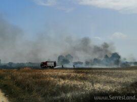 Πυρκαγιά εν υπαίθρω στις Σέρρες (Φώτο)