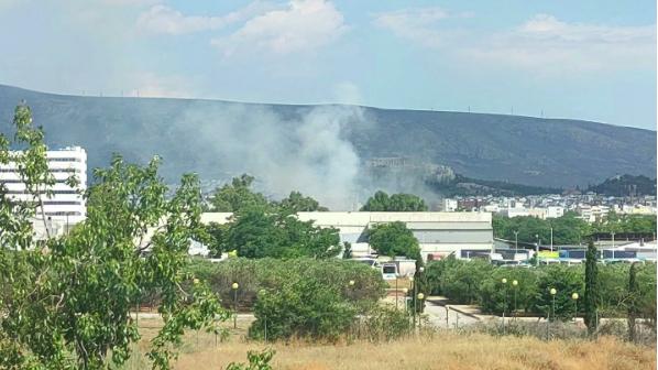 Πυρκαγιά εν υπαίθρω στο Γεωπονικό Πανεπιστήμιο (Φώτο)