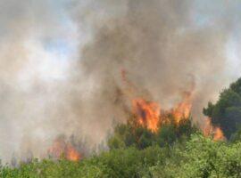 28 Δασικές πυρκαγιές το τελευταίο 24ωρο