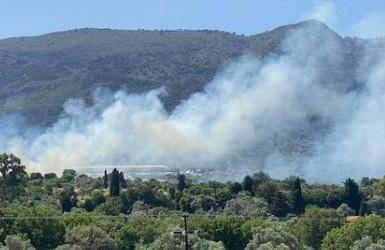 Χιος- Δυο Πυρκαγιές σε αγροτοδασική έκταση