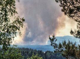 Μεγάλη δασική πυρκαγιά στην Σουηδία
