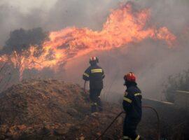 Πυρκαγιά σε εξέλιξη σε χορτολιβαδική έκταση στον Έβρο