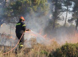 Πυρκαγιά σε γεωργική έκταση στο Σπαθοβούνι Κορινθίας