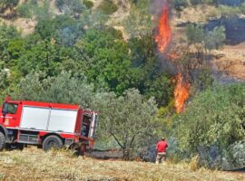 Πυρκαγιά σε γεωργική έκταση στην περιοχή Μαχαιράδο Ζακύνθου