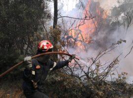 Πυρκαγιά σε χορτολιβαδική έκταση στην περιοχή του Αμάρυνθου στην Ευβοία