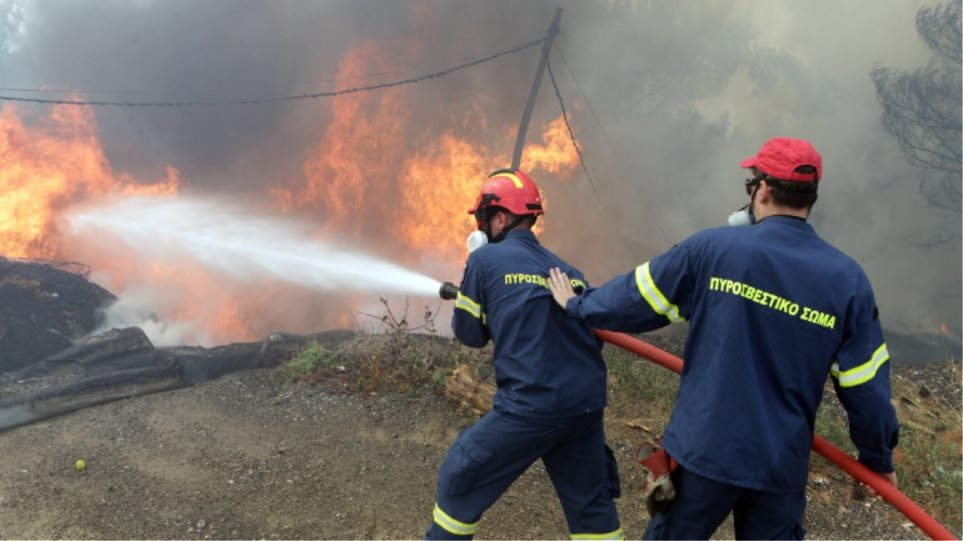 Μεσολόγγι: Κινητοποίηση της Πυροσβεστικής για πυρκαγιά στην Αγριλιά