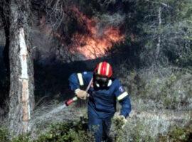27 Δασικές πυρκαγιές το τελευταίο 24ωρο
