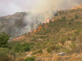 Πυρκαγιά ΤΩΡΑ σε δασική έκταση στα Καρδάμυλα Χίου