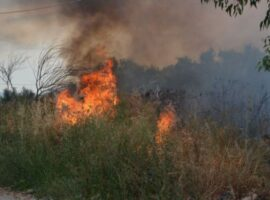Πυρκαγιά ΤΩΡΑ εν υπαίθρω στην Κομοτηνή