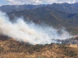 Πυρκαγιά ΤΩΡΑ σε δασική έκταση στον Πολυπόταμο Ευβοίας