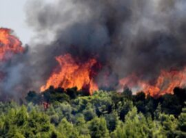 Δασική πυρκαγιά στην περιοχή Άνυδρο Μεσσηνίας