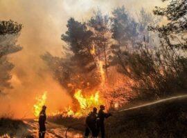 41 Δασικές πυρκαγιές το τελευταίο 24ωρο