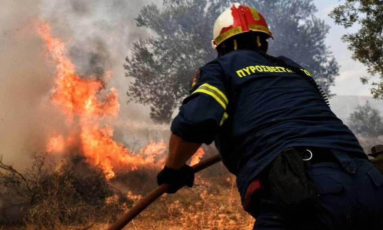 Πυρκαγιά ΤΩΡΑ εν υπαίθρω κοντά σε σπίτια στο Πόρτο Ράφτη Αττικής