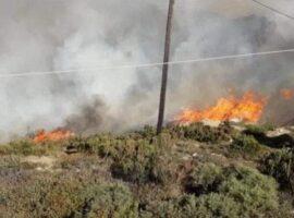 Πυρκαγιά ΤΩΡΑ σε χορτολιβαδική έκταση στην Νάξο