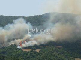 Πυρκαγιά στην Αχαϊα  – Εκκενώνεται ο οικισμός Δροσιά (Φώτο)