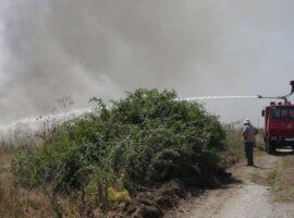 Πυρκαγιά σε χορτολιβαδική έκταση στα Τρίκαλα Ημαθίας