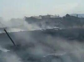 Πυρκαγιά σε χορτολιβαδική έκταση στον Βρυότοπο Λάρισας