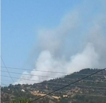 Κύπρος-Μεγάλη δασική πυρκαγιά σε εξέλιξη στο Πέρα Πεδι