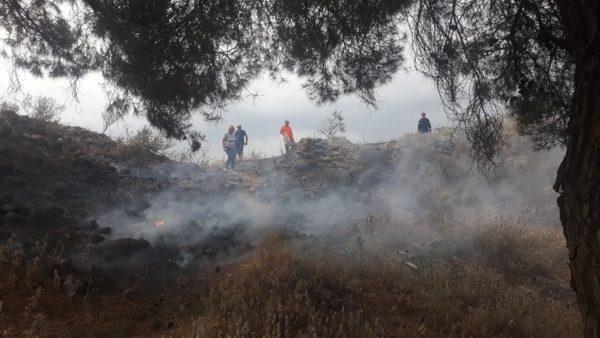 Πυρκαγιά στο άλσος των Φαρσάλων από κεραυνό – Επιχειρεί η πυροσβεστική