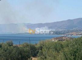Πυρκαγιά ΤΩΡΑ σε χορτολιβαδική έκταση στην Κάρυστο Εύβοιας