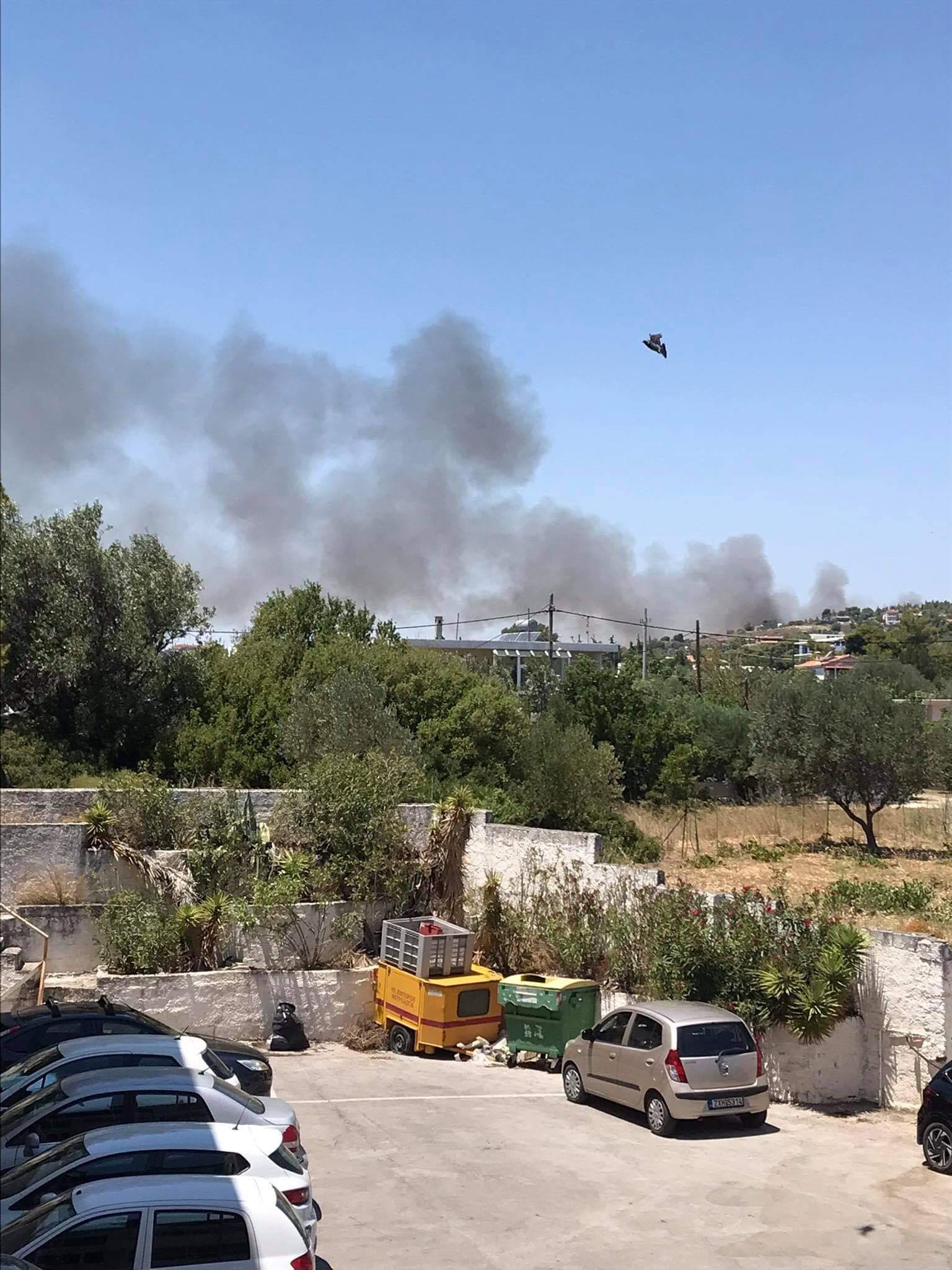 Πυρκαγιά σε χαμηλή βλάστηση στην περιοχή Λόφος Παλλήνης Αττικής