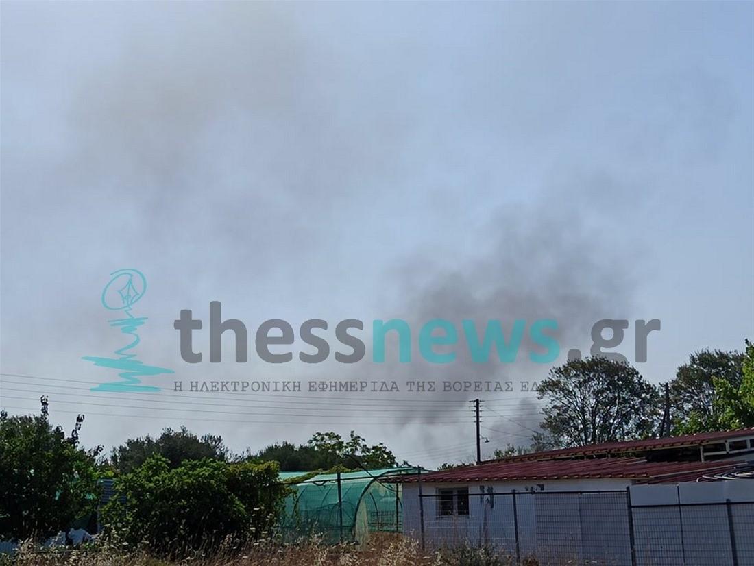 Πυρκαγιά σε ξερά χόρτα στην Βεργιά Χαλκιδικής