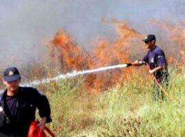 Πυρκαγιά σε αγροτοδασικη έκταση μεταξύ Αλαμάνου και Σολομού  Κορινθίας