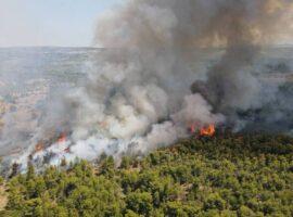 Δασική πυρκαγιά ΤΩΡΑ στην Σταματά Αττικής.(φωτο)