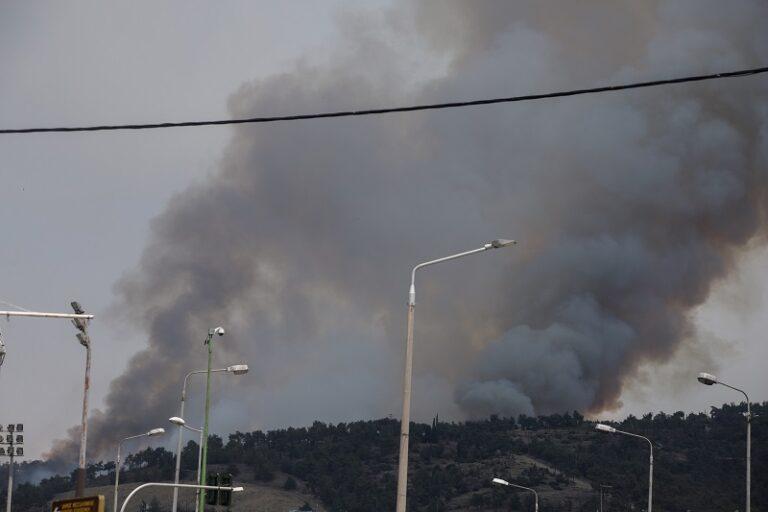 Κάηκαν 90 στρέμματα δάσους στο Σέιχ Σου