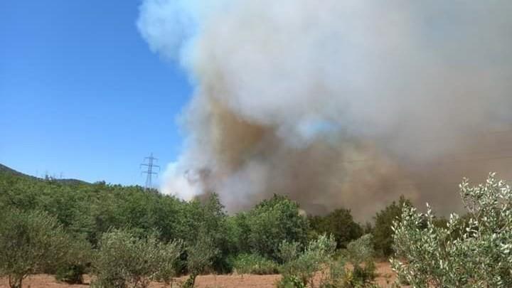 Πυρκαγιά στη Μεγαλόπολη: Ενισχύονται οι δυνάμεις που επιχειρούν