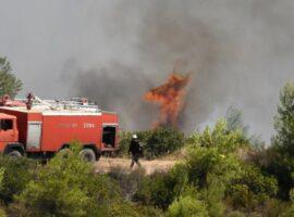 47 Δασικές πυρκαγιές εκδηλώθηκαν το τελευταίο 24ωρο