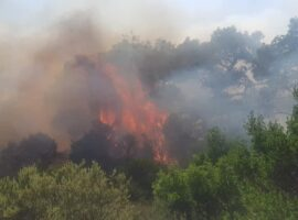 Σε εξέλιξη η δασική πυρκαγιά στης Σέρρες