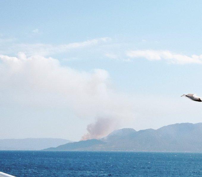 Πυρκαγιά ΤΩΡΑ σε αγροτοδασική έκταση στα στα Μέθανα Τροιζηνίας