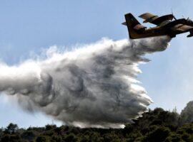 Πυρκαγιά σε δασική έκταση στην Ροδόπη