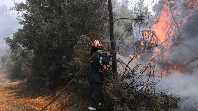 Υπό μερικό έλεγχο τέθηκε η πυρκαγιά στη δασική έκταση στο Σελινούντα Αχαΐας.