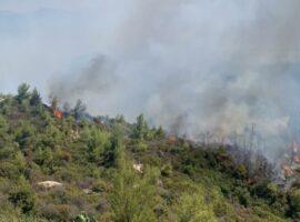 Κόρινθος: Οριοθετήθηκε η πυρκαγιά στο Καλέντζι