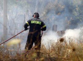 Υπό έλεγχο η πυρκαγιά στην περιοχή Νερατζούλες Ζακύνθου
