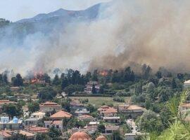 Πυρκαγιά στην Σταμάτα: Καίγονται ΤΩΡΑ σπίτια στον Διονυσο (Βίντεο)