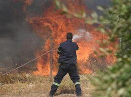 65 Δασικές πυρκαγιές εκδηλώθηκαν το τελευταίο 24ωρο