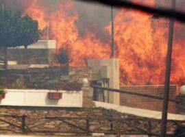 Φωτογραφικό υλικό απο την πυρκαγιά στην Κάρυστο