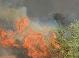 Πυρκαγιά σε εξέλιξη σε χορτολιβαδική έκταση στην περιοχή Πρινές στο Ρέθυμνο Κρήτης