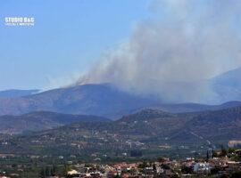 Πυρκαγιά ΤΩΡΑ σε δασική έκταση στο Αραχναίο Αργολίδας