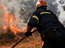 Πυρκαγιά στον Πεντάλοφο Θεσσαλονίκης  – Κινητοποιείται η Πυροσβεστική