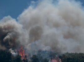 Πυρκαγιά ΤΩΡΑ σε δασική έκατση στην περιοχή Δορούφι Αργολίδας