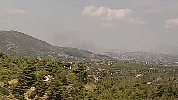Πυρκαγιά σε αγροτοδασική έκταση στον Ωρωπό Αττικής (Φώτο)