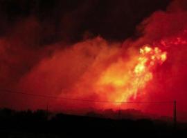 Πυρκαγιά σε δασική έκταση στη Δουμπιά Χαλκιδικής