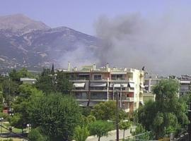 Πυρκαγιά σε αγροτοδασική έκταση στον Ελεκίστρα Αχαΐας (Φώτο)
