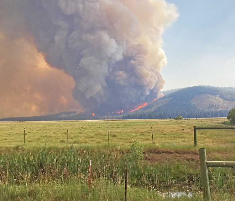 Tennant Fire. Klamath NF photo