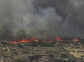 Πυρκαγιά σε χορτολιβαδική έκταση στο Δίλοφο Τριγώνου Ορεστιάδας